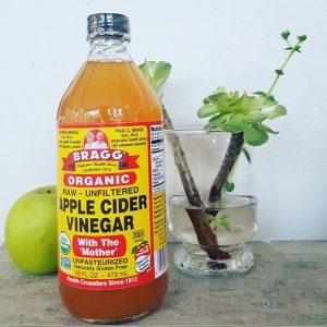 apple cider vinegar sharon atkins